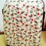 長女ひとめぼれ。ムーミン柄のスーツケース(機内持ち込みサイズ)で帰省を楽しむ。
