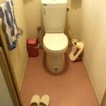 実家のトイレ掃除。ドアのへこみにも大量に溜まっていますよ。